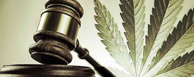 cbd legale in italia oppure no ecco la situazione legale